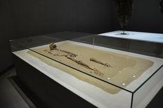 """Archäologiemuseum Schloss Eggenberg (Joanneum) -- Sogenannter """"Bolzengeorg"""" - ein im Bereich der Grazer Burg aufgefundenes Skelett, in dessen Schädel ein Armbrustbolzen steckte. Datiert wird der Fund in das 14. Jahrhundert."""
