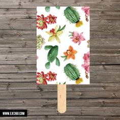 Pai pai cactus - La Tienda de Eje360