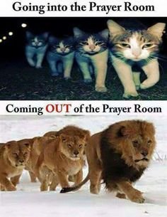 Going in fearful, coming out fearless! #theamazingpowerofprayer #amazingresultofqualitytimewithGod