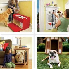 10 Cool DIY Pet Projects