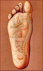 Foot Reflexology Charts & Reflexology Foot Chart Tips! Reflexology Benefits, Reflexology Points, Hand Reflexology, Acupressure Points, Health And Nutrition, Health Tips, Health Fitness, Foot Chart, Feet Show