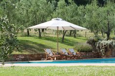 Welcome to Casellino #Casellino #Summer #Travel #Tuscany #Italy #CampodiTorri #Oil #Olive #Country #Food casellino.com