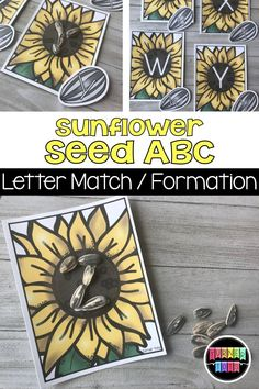 Match the uppercase sunflower letters to the lowercase seeds with this garden-themed alphabet activity for preschool. for preschool for toddlers Seeds Preschool, Preschool Garden, Preschool Literacy, Preschool Themes, Literacy Activities, Preschool Flower Theme, Spring Preschool Theme, April Preschool, Kindergarten Prep
