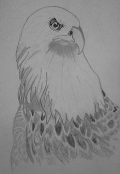 Eagle by Ionuț Scurtu (Shortie)