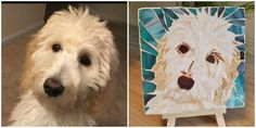 "Pet portrait petite mosaic, custom design from your pet's photo 5""X5"" Free Shipping - Lucy Designs Art"