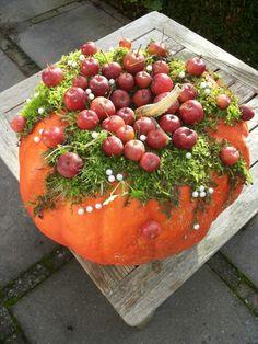 Pompoen mos sierappeltjes Pumpkin Flower, Pumpkin Decorating, Autumn Home, Holidays And Events, Flower Designs, Watermelon, Berries, Merry Christmas, Thanksgiving