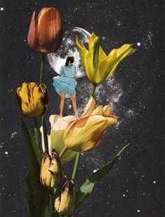 "EVIDENTS : Collage - BETH HOECKEL ""Garden of Eden"""