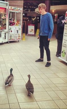 Ashton talking to a pair of ducks.  Nothing odd going on over here.
