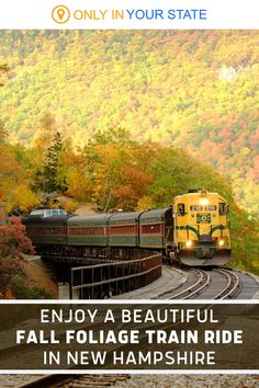 Enjoy a historic and scenic train ride through beautiful fall foliage in New Hampshire! A great local day trip adventure with family, you'll want to bring your camera. The views are magical in the Saco River Valley and autumn may be the best time to enjoy a rail excursion in the area. Fall Foliage Map, Travel Ideas, Travel Tips, Saco River, Scenic Train Rides, Hiking Places, Over The River, Happy Trails, Car Cleaning