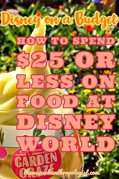 Disney on a Budget: How to Spend $25 or less on Food at Disney World - Theme Park Anthropologist