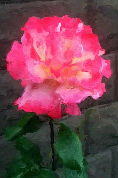 Rose...Paint & Ink