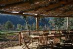Villa Monticiano: Tuscany > Montalcino Luxury Villa for Rent Villa Tuscany, Outdoor Furniture Sets, Outdoor Decor, Luxury Villa, Italy, Home Decor, Luxury Condo, Italia, Decoration Home