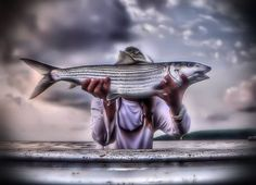 Bonefish with Cordell Baum, the Bonefish Whisperer, in south Florida