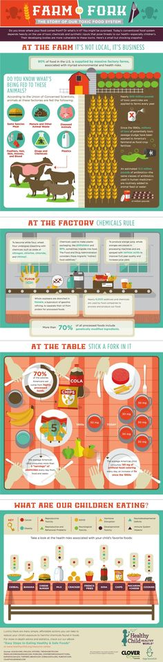 Do You Know Where Your Food Comes From? (Infographic)