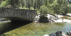 Endangered: The Sugar Pine Bridge, pictured, as well as the Ahwahnee Bridge were recently added to the 2012 most endangered historic places list. Yosemite National Park