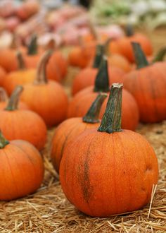 What would autumn be without pumpkins