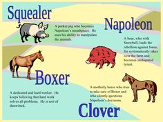 Animal Farm Quotes Gorgeous Animal Farm  Character Map Storyboard By Rebeccaray  Animal Farm