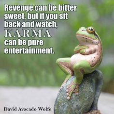 Revenge can be bitter sweet, but if you sit back and watch karma can be pure entertainment. Great Quotes, Me Quotes, Funny Quotes, Inspirational Quotes, Motivational, Frog Quotes, Smart Quotes, Photo Quotes, Funny Frogs