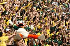 go ducks | Go Ducks!
