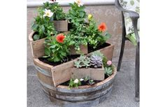 How to build a recycled barrel planter | Greendiary : Greendiary – Let's go green and save the environment for a sustainable future