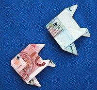 Geldvisjes! Leuk om te geven, bijvoorbeeld voor het halen van een zwemdiploma