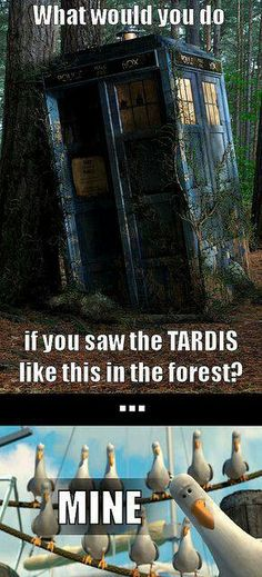 I'd try to find the Doctor!