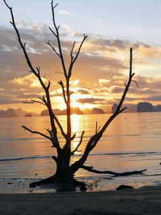 Sunrise on the beach, Koh Yao Noi, Thailand. Beautiful, laid back and not yet spoiled by tourism. Follow the link for more pictures and story.