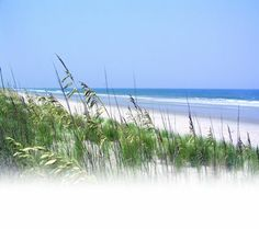 Pawley's Island South Carolina-my vacation is booked-nothing to do but hang out