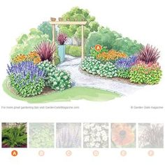 Welcome visitors strolling along your path with this charming combination of plants.
