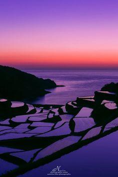 Japon par Sumika Film Photography