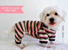 Dog Pajamas Pattern Bundle All Sizes, Sewing Pattern, Dog Clothes Pattern - Dogs Great Accessories - Pajama Pattern, Dog Pattern, Pattern Sewing, Dog Sweater Pattern, Bonnet Pattern, Free Pattern, Dog Pajamas, Onesie Pajamas, Dog Clothes Patterns