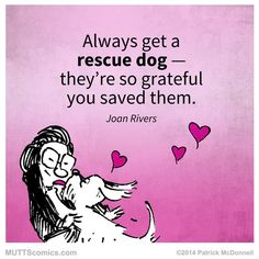 We LOVE this special #muttscomics in honor of Joan Rivers! (Rescue) Dog + Human = Family pic.twitter.com/hSBe5jHGMV