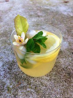 Ingrédients : 6 beaux citrons jaunes, 1,5 litre d'eau, 80 g de cassonade, 2 CS de miel, 2 branches de menthe.  Pressez le jus des citrons et...