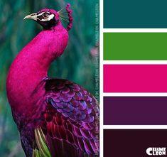 Color Inspiration - contrasting colors for cinder block porch shelf (purple & blue) - CoDesign Magazine Color Schemes Colour Palettes, Paint Color Schemes, Colour Pallette, Color Combos, Peacock Color Scheme, Purple Color Schemes, Green Palette, Peacock Colors, Color Balance