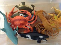 Rubber/plastic sea creatures: very versatile. We use them for regular free play, naming them at circle, water table play, and sand table play.