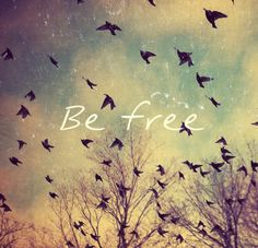 Freedom. How I long to experience it fully in my heart. Jesus gives it to me :)