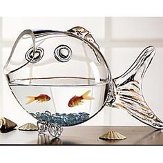 Everytime I see this I want to to buy goldfish! Everytime I see this I want to to buy goldfish! Everytime I see this I want to to buy goldfish! Goldfish Bowl, Things To Buy, Things I Want, Stuff To Buy, Aquarium Original, Aquariums, Large Crystals, Aquarium Fish, Cool Stuff