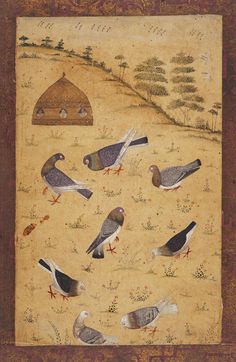 Eight pigeons and a pigeon-cote on a hill Maker: Unknown; miniaturist Category: miniature (painting) School/Style: Mogul School Period: early 18th Century Technique: watercolour