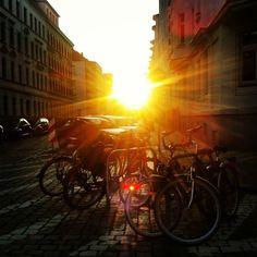 #leipzig #sun #leipzigphoto #thisisleipzig #silvertownphoto
