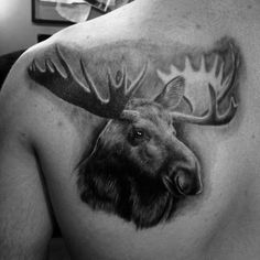Gentleman With Realistic Moose Back Tattoo