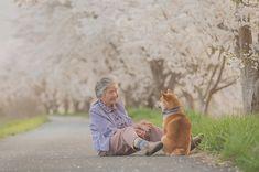 「僕とおばあちゃんとの約束の桜」。見た瞬間になぜか涙がでちゃう不思議で温かい写真