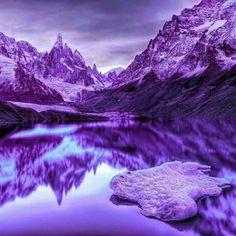 Purple everywhere. Purple mountain's majesty above th fruited plains. Purple Love, Purple Hues, All Things Purple, Shades Of Purple, Deep Purple, Pink Purple, Purple Stuff, Color Lila, Purple Reign