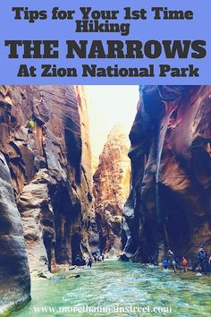 Zion Narrows Day Hike: What You REALLY Need to Know Before You Go! Nervous about hiking the Narrows at Zion National Park? Almost anyone can do The Zion Narrows Day Hike! Find out what you REALLY need to know before you go! The Narrows Zion, Hiking The Narrows, Narrows Zion National Park, Zion Park, Nationalparks Usa, Us National Parks, Day Hike, Location, Vacation Spots
