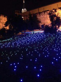 Light festival 2015 ,,Jerusalem,Israel