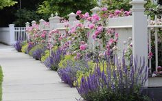 5 Great Ideas For Landscaping On A Busy StreetTerraCast Products