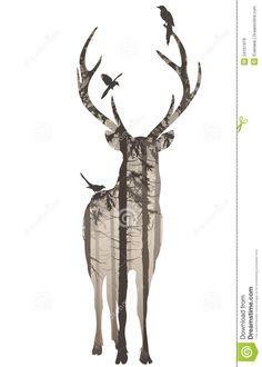 Deer silhouette from patterned woods paper