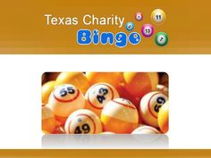 Bryan Bingo - Contact At (979) 779-2871