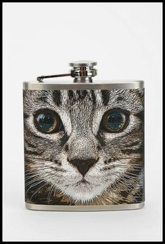 10 Holiday Gifts Under $20 for the Cat Lovers in Your Life | Catster