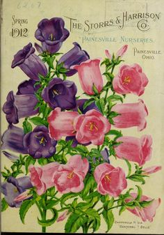 Painesville Nurseries :  Spring 1912 Seed Catalogue  - Storrs and Harrison Co.