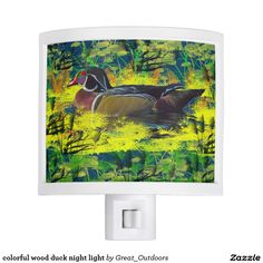 colorful wood duck night light